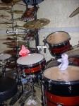 Dijon_Schlagzeug.jpg
